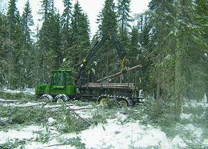 Вывозка древесины форвардером John Deere