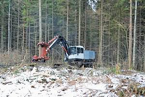 Рис. 3. Валка леса машиной ЛП-19Б/15 с модернизированным ЗСУ  в ходе производственных испытаний