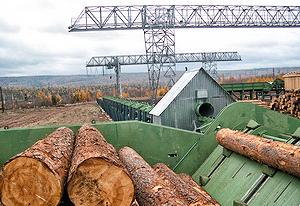Установка сортировки круглого леса в Братске