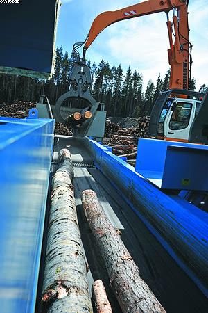 Подача дровяной древесины для измельчения в рубительной машине Hombak