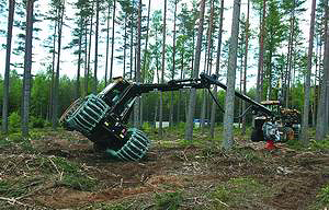 Демонстрация харвестера Eco Log 560D