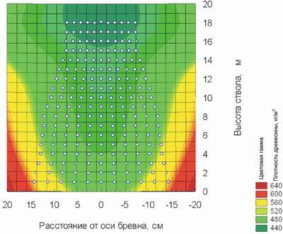 Рис. 2. Денситограмма ствола сосны при влажности 12%