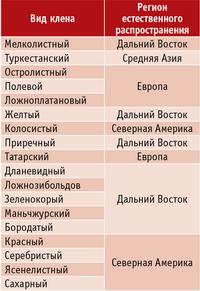 Таблица 2. Регионы естественного распространения клена